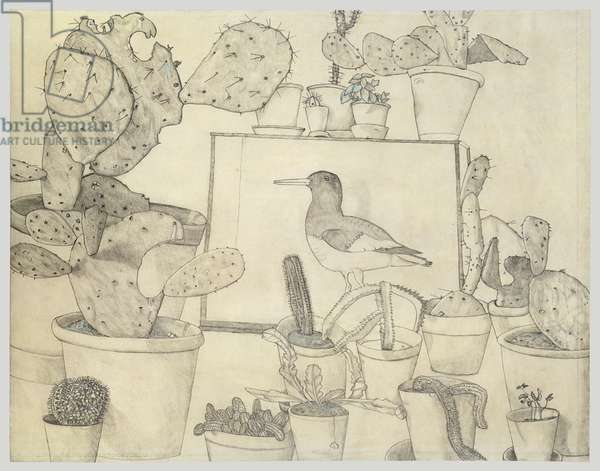 Cacti and Stuffed Bird, 1943 (pencil and blue crayon on paper)
