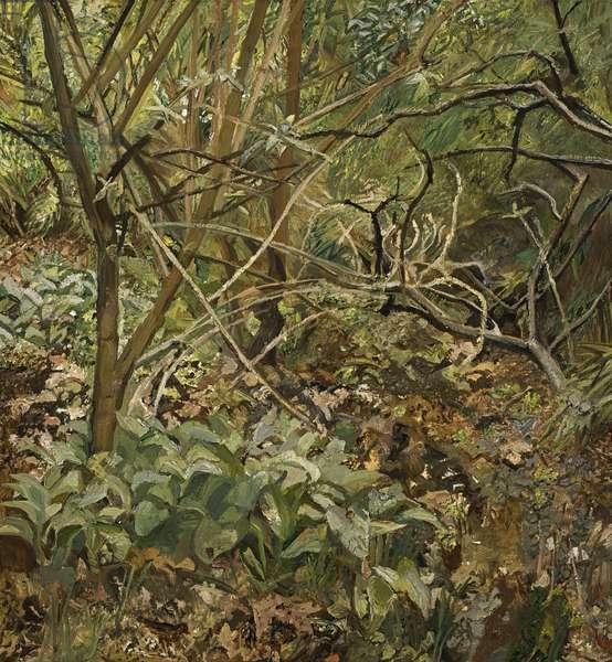 Garden Painting, 1995 (oil on canvas)