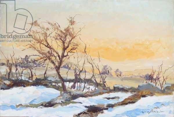 Sunset in Sannine, Lebanon, 2011 (oil on canvas)