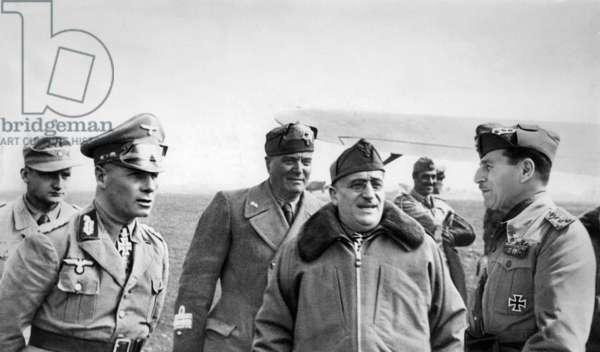Cavallero and Rommel in Africa