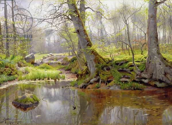 Woodland Pond, 1890 (oil on canvas)
