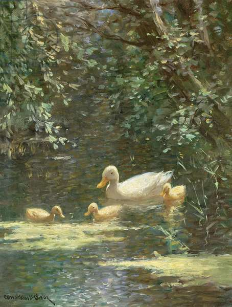 Mother Duck with Ducklings in the Water (oil on canvas)e