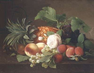 Still life with pineapple, peaches, plums and grapes