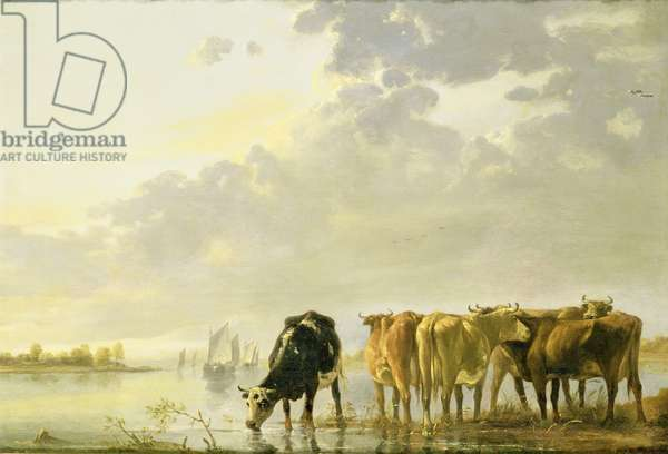 Cattle by a River, c.1650 (oil on panel)