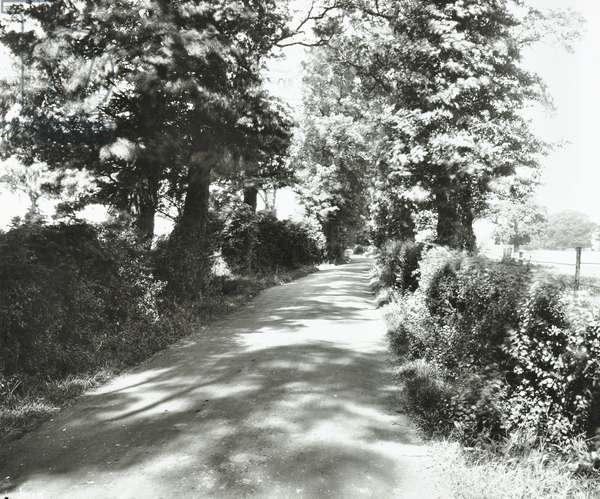 Saint Helier Estate: Green Lane, London, 1929 (b/w photo)