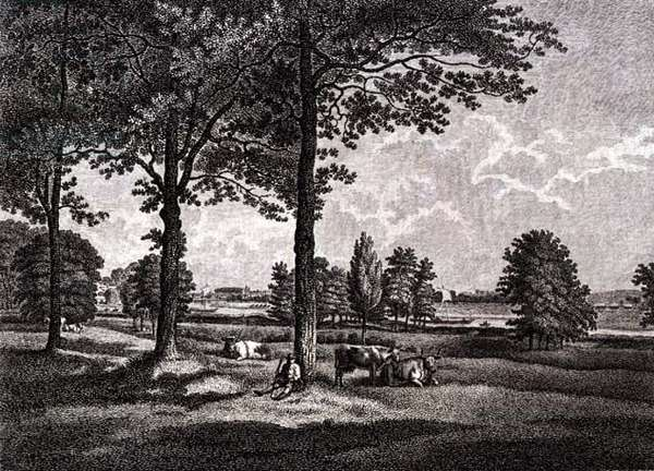 Strawberry Hill: From the Terrace, 1784 (engraving)
