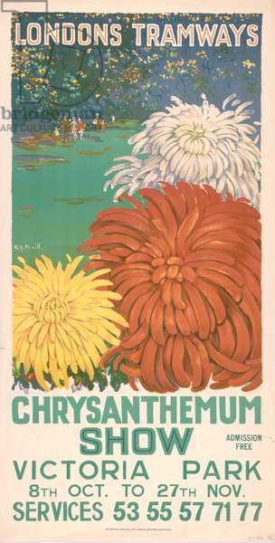 Chrysanthemum Show, Victoria Park, 1927 (colour litho)