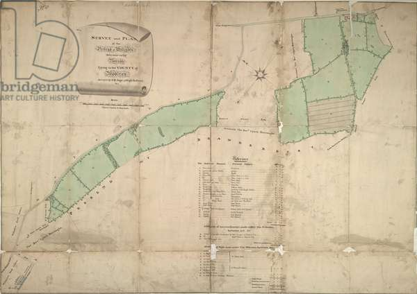 Map of Willesden, London (litho)