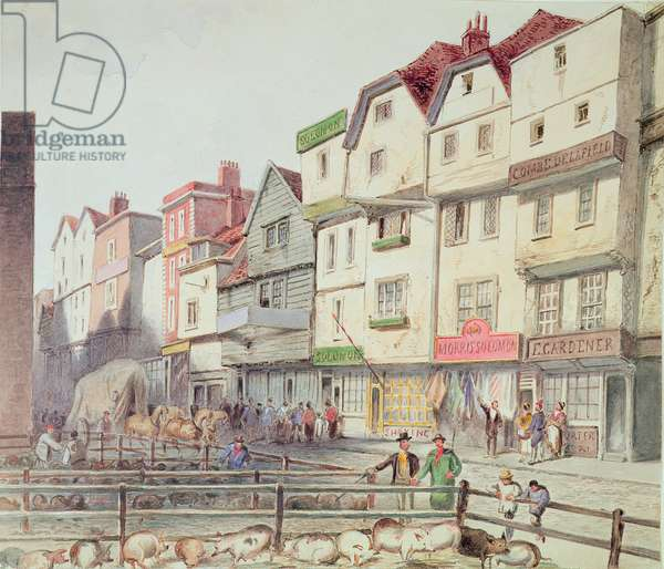 View of Long Lane, with pigs in pens in part of Old Smithfield Market, 1844 (w/c on paper)