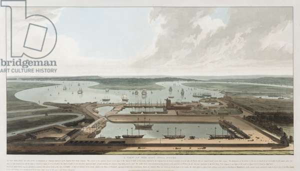 A View of the East India Docks, 1808 (engraving)