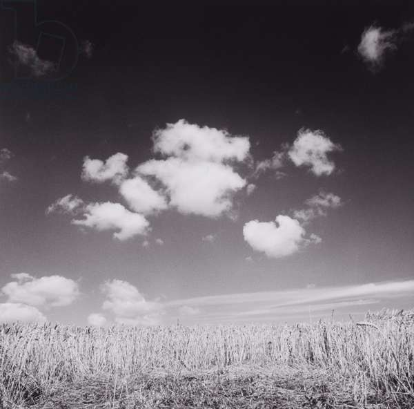 Field and Clouds in Sky