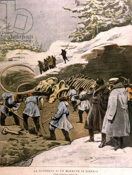 La découverte d'un mammouth in Sibérie. 1902.