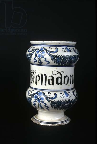 XVI century pharmacy pot containing Belladonna, toxic herb used in pharmacy. Museum of Science and Technology, Milan.