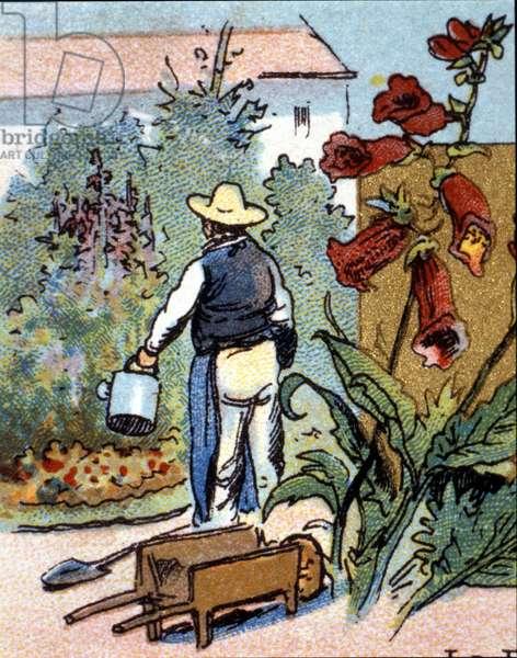 A gardener, chromolithography, 19th century.