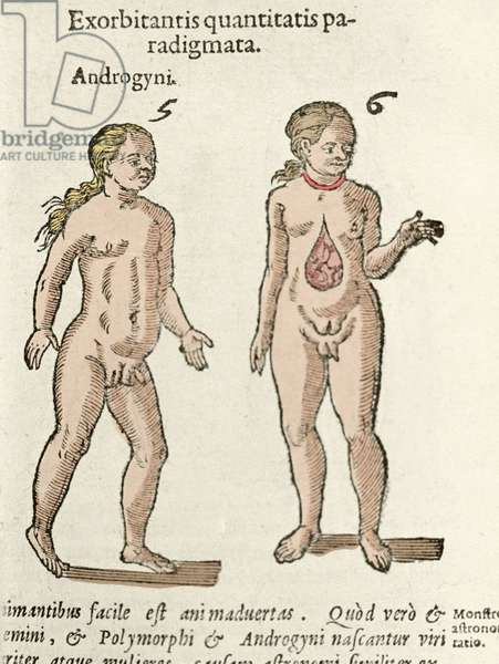 """Representation of an androgynous and a hermaphrodite. Plate taken from De natura Divinis caracteris"""""""" by Cornelio Gemma 1575"""