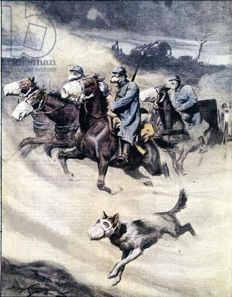 "First World War: Horsemen and Dog with gas masks 1916 Illustration from ""La domenica del corriere"""" 1916"