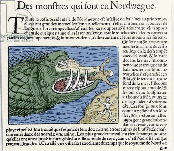 """A marine monster beats a swimmer near the coast of Norway. Engraving by Olaus Magnus (1490 - 1557), Swedish religious and geographer, """"Historia de Gentis Septentrionalibus"""", Venice, 1567."""