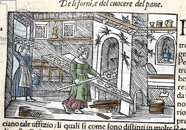 """Preparation and baking of bread in an oven. Engraving by Olaus Magnus (1490-1557), Swedish religious and geographer, """"Historia de Gentis Septentrionalibus"""", Venice, 1567."""