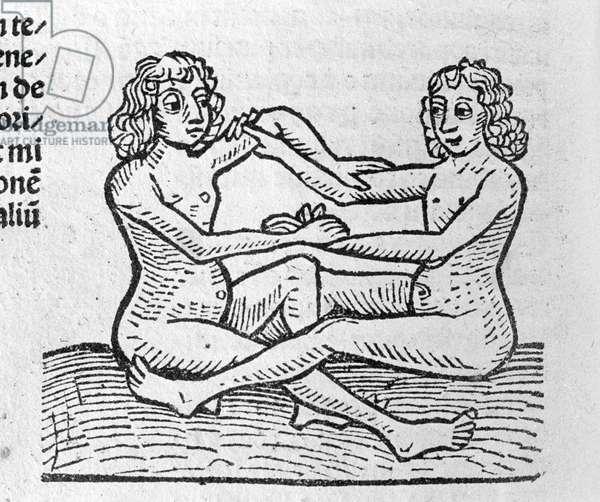 Les Gemini - in Traité de Johannes Angeli De Magnisconnectionibue annorum revolutionibus ac eorum pefectionibus. Augsburg, Erhard Ratdolt, 1489