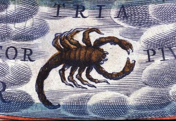 Horoscope: sign of the zodiac, the Scorpion.