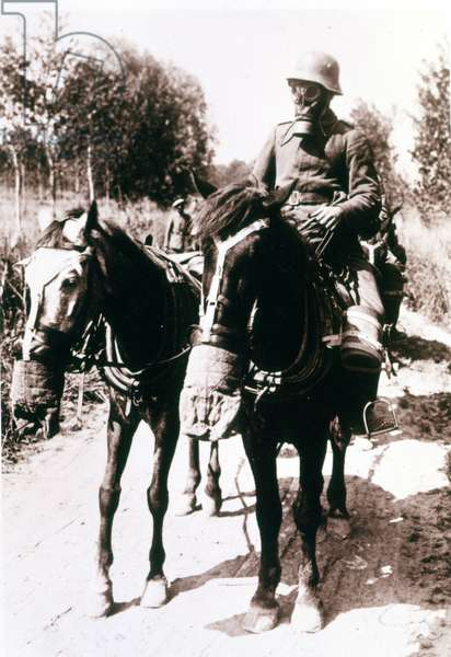 Gas War: a soldier and his 2 horses wearing the gas mask during the First World War.