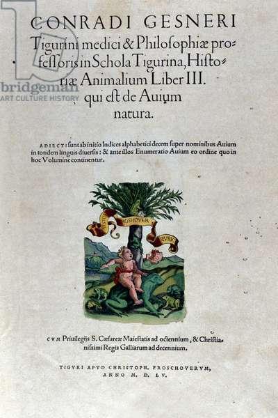 The frontispiece of the third volume by Historia Animalium by Conrad Gesner (1516 - 1565), Tiguri, 1555. Bibl. Nazionale Braidense, Milan.