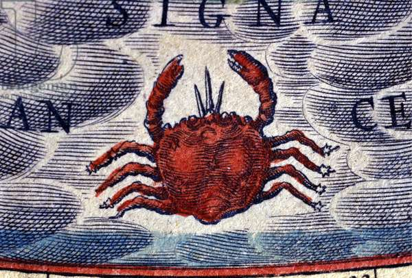 Horoscope: sign of the zodiac, Cancer. 16th century engraving.