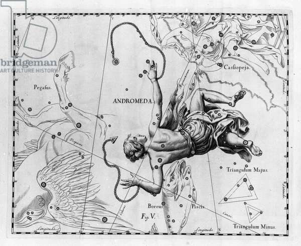 """The constellation Andromede. Plate drawn from """""""" Firmamentum Sobiescanum sive Uranographia"""""""" by Johannes Hevelius or Hevel (1611-1687), 1690."""