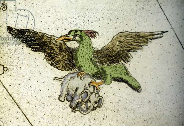 The giant bird Rok carrying an elephant between its greenhouses to give it to its young, detail of a world map by Vincenzo coronelli (1650-1718). 17th century