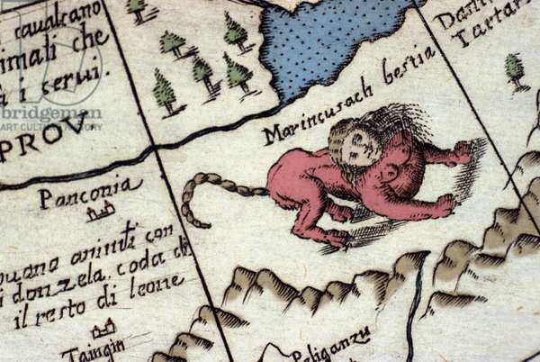 Representation of a manticore, a fantastic creature with a human head (often with horns, blue eyes and three rows of teeth), and a scorpion or dragon tail and a lion body. Detail of a world map by Vincenzo coronelli (1650-1718). 17th century