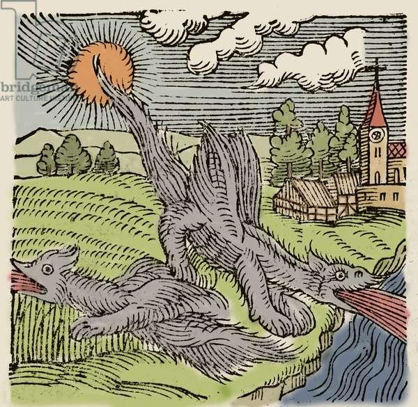 "Representation of basilics in flight burning wheat fields. Engraving from ""Prodigiorum ac ostentorum chronicon"" by Conrad Lycosthenes (1518-1561). 1557."