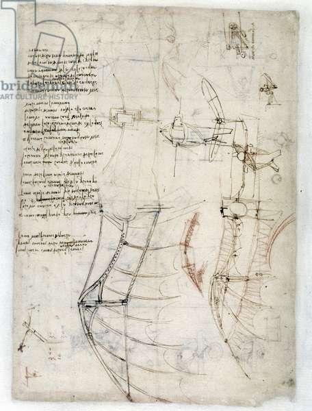 Study on flight by Leonard de Vinci (Leonardo da Vinci) - Codex Atlantique