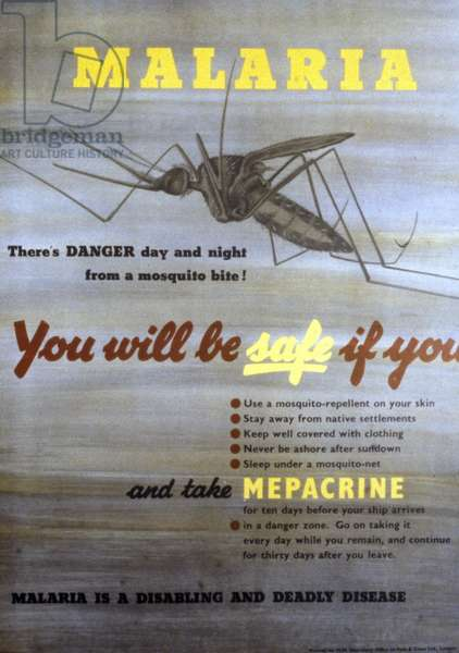 Poster warning of the dangers of mosquito bites and the risks of malaria.