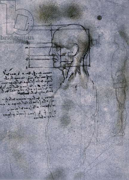 Anatomical study of man (head) by Leonardo da Vinci (Leonardo da Vinci) (1452 - 1519)