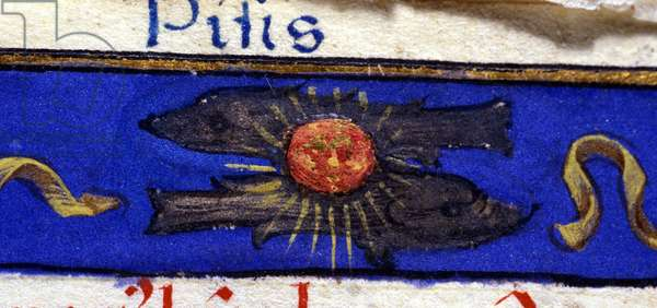 Sign of the zodiac: fish. 15th century manuscript.