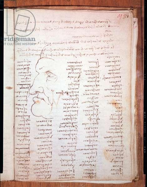 Codex Trivulziano by Leonardo da Vinci (Leonardo da Vinci) (1452 - 1519) - Trivulziana Library, Milan