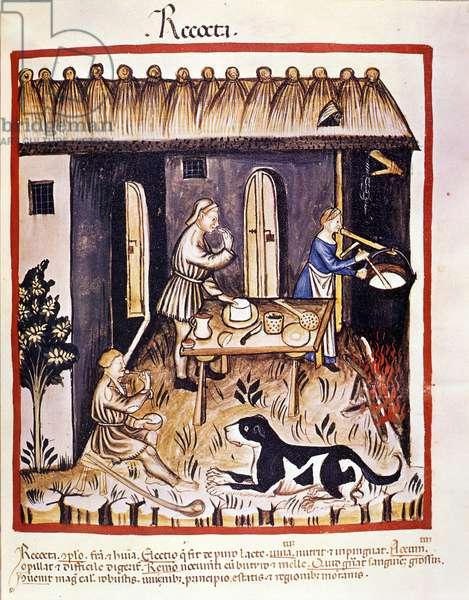 "Preparation of ricotta - facsimile after the milking of medicine and dietetics """" Tacuinum sanitatis"""", 15th century Biblioteca Braidense, Milan"