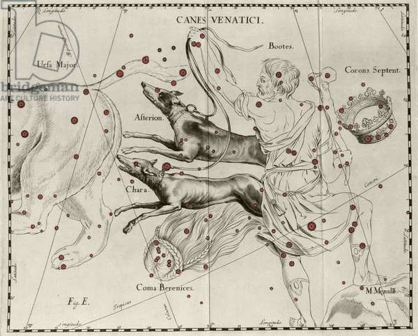 """The constellation Canes Venatici, Hunting Dogs. Plate drawn from """""""" Firmamentum Sobiescanum sive Uranographia"""""""" by Johannes Hevelius or Hevel (1611-1687), 1690."""
