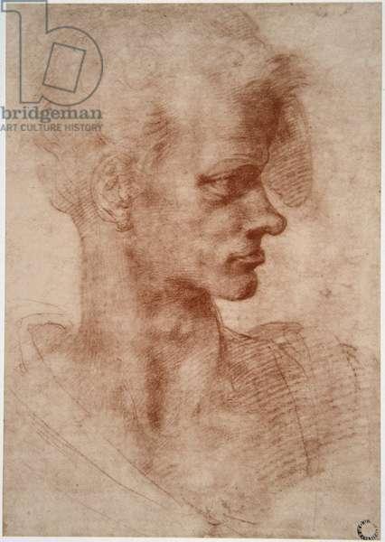 Leonardo da Vinci (Leonardo da Vinci) (1452 - 1519): Caricature portrait of a young man (Immagina)