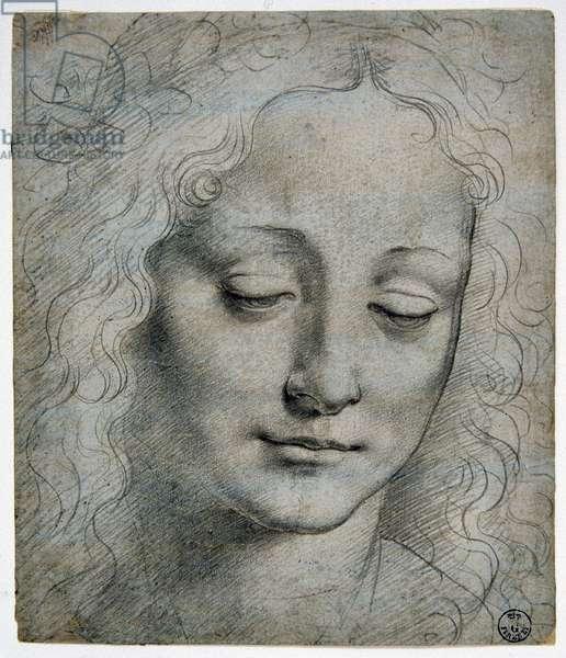 Giovanni Antonio Boltraffio (Beltraffio) (1467 - 1516) (the best known pupil of Leonard de Vinci): head of a boy crown of leaves in the way of Verrocchio, GDSU 425 E