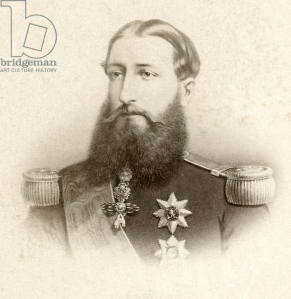 Leopold II (1835-1909), King of Belgium, Portrait at time of Coronation, 1865