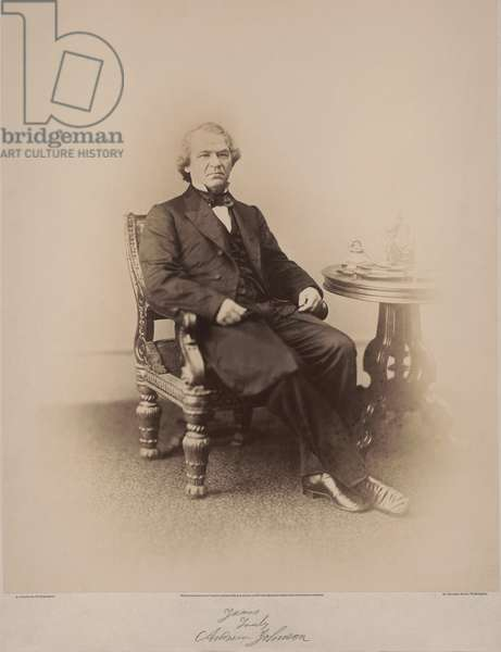 Andrew Johnson (1808-75), 17th President of the United States, Seated Portrait, Washington DC, USA, 1866 (b/w photo)