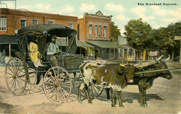 "African-American Couple Sitting in Ox-Drawn Carriage, ""Overland Oxpress"", North Carolina, USA, Hand-Colored Postcard, circa 1910"