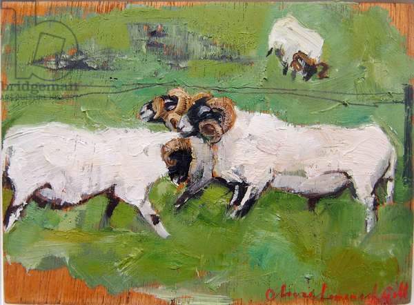 Four Tups, study, 2012 (oil on panel)