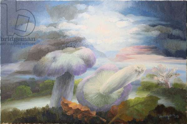 Landscape with Mushrooms, 2003 (oil on canvas)