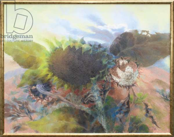 Sunflower Heads in a Landscape, 1998 (oil on canvas)