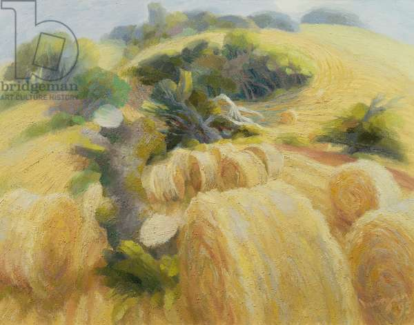 Harvest, 1995 (oil on canvas)