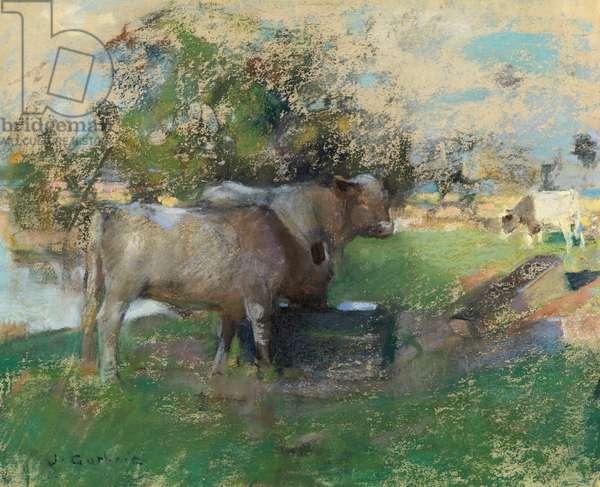 Pastureland (pastel on paper)