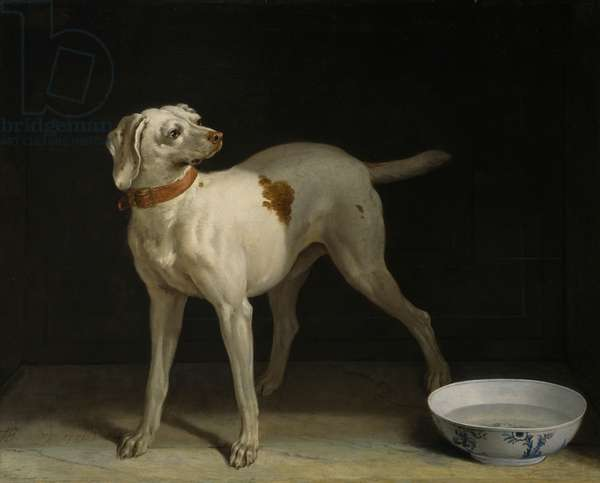 Dog, 1751 (oil on canvas)