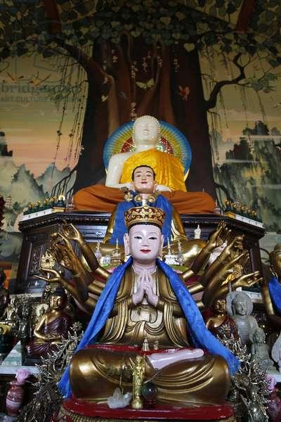 Tu An Buddhist temple ; Buddha statues ; Saint-Pierre-en- Faucigny France